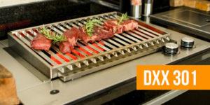 dxx301